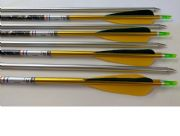 8 x Limited Edition Easton X23 Arrows - Ideal for indoor
